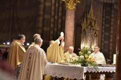 biskupsko-redjenje-Ivan-Curic (216)