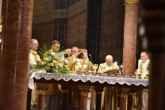 biskupsko-redjenje-Ivan-Curic (221)