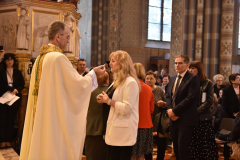 biskupsko-redjenje-Ivan-Curic (235)