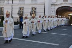 biskupsko-redjenje-Ivan-Curic (28)