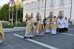 biskupsko-redjenje-Ivan-Curic (34)