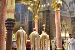 biskupsko-redjenje-Ivan-Curic (92)